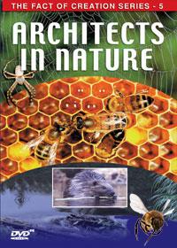 arhitekte-u-prirodi