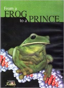 od-zabe-do-princa